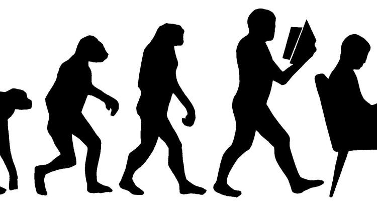 bar brothers evolution
