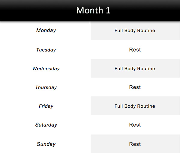 6 Month Bar Brothers Workout Plan For Beginners