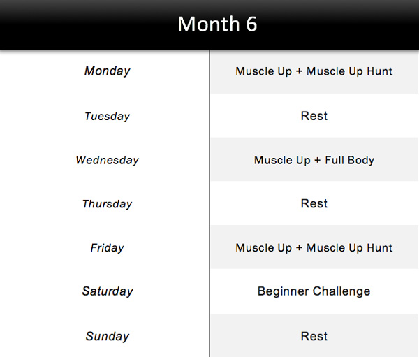 Month-6-Schedule-For-Beginners