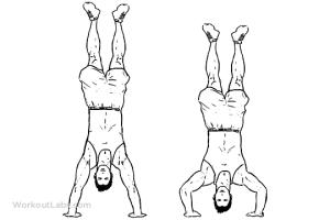 Calisthenics Shoulder Workout