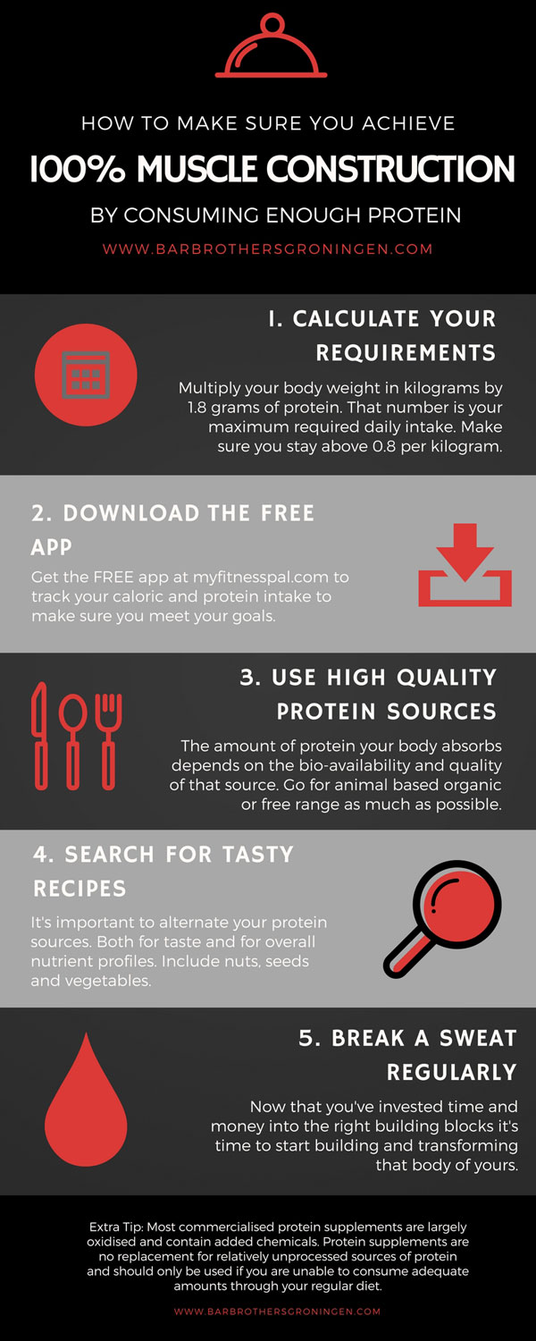 The diet plan for protein intake and nutrition for beginners
