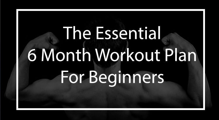 The Essential 6 Month Calisthenics Workout Plan | Bar