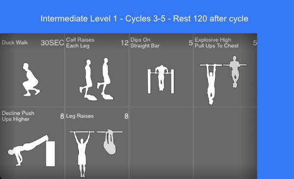 The Essential 6 Month Calisthenics Workout Plan | Bar